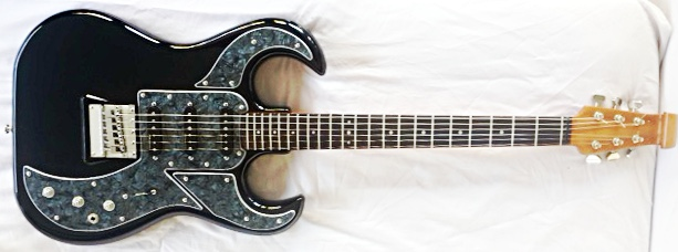 1965 Burns Bison with custom pickguards